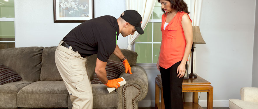 San Rafael, CA carpet upholstery cleaning